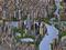 SimCity 4 trazia gráficos 3D, mas manteve visão isométrica (Créditos: Divulgação) (Foto: SimCity 4 trazia gráficos 3D, mas manteve visão isométrica (Créditos: Divulgação))
