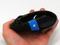 Microsoft anunciou dois mouses com botão de acesso rápido à tela inicial do Windows 8 (Foto: Reprodução/Engadget) (Foto: Microsoft anunciou dois mouses com botão de acesso rápido à tela inicial do Windows 8 (Foto: Reprodução/Engadget))