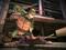 Teenage Mutant Ninja Turtles: Out of The Shadows (Foto: Divulgação) (Foto: Teenage Mutant Ninja Turtles: Out of The Shadows (Foto: Divulgação))