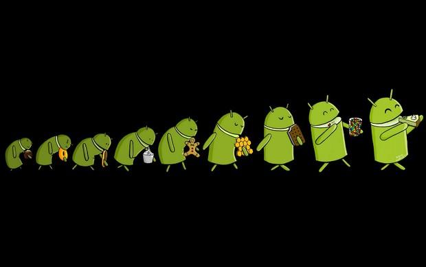 Novo Android deve se chamar Key Lime Pie (Foto: Reprodução)