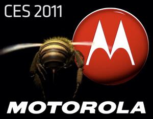 Motorola Buzz