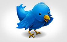 Pássaro do Twitter (Foto: Reprodução)