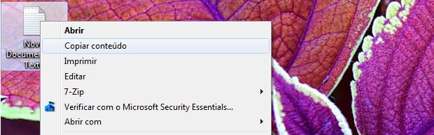 Copiar texto no Windows 7 (Foto: Reprodução/Helito Bijora)
