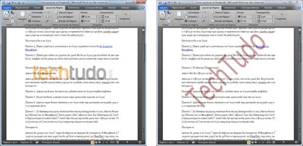 Exemplos de marca d'água com imagem e texto (Foto: Reprodução/Camila Porto)