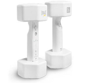 Wii - Pesos  (Foto: Reprodução)