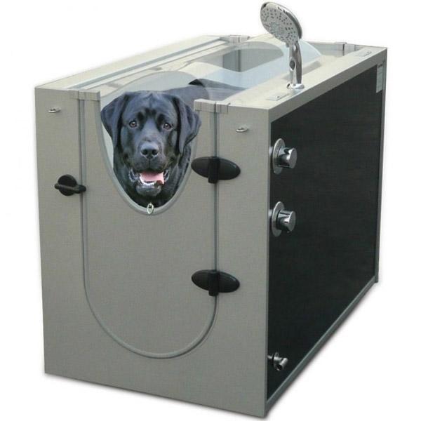 Um chuveiro para cães (Foto: Reprodução)