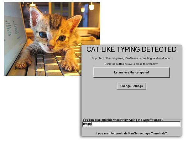 Pawsense, um software que reconhece quando um gato está digitando (Foto: Reprodução)