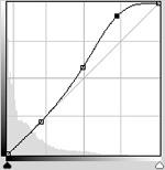 Curves (Foto: Reprodução/Gustavo Ribeiro)