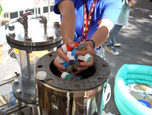 Máquina de reciclagem (Foto: OurWorld)