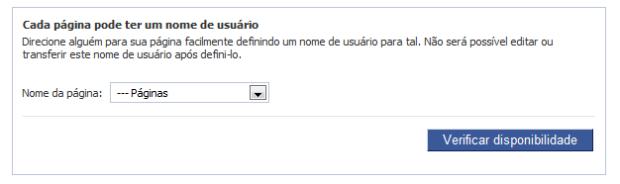 Escolha qual página terá a URL otimizada (Foto: Reprodução/Camila Porto)