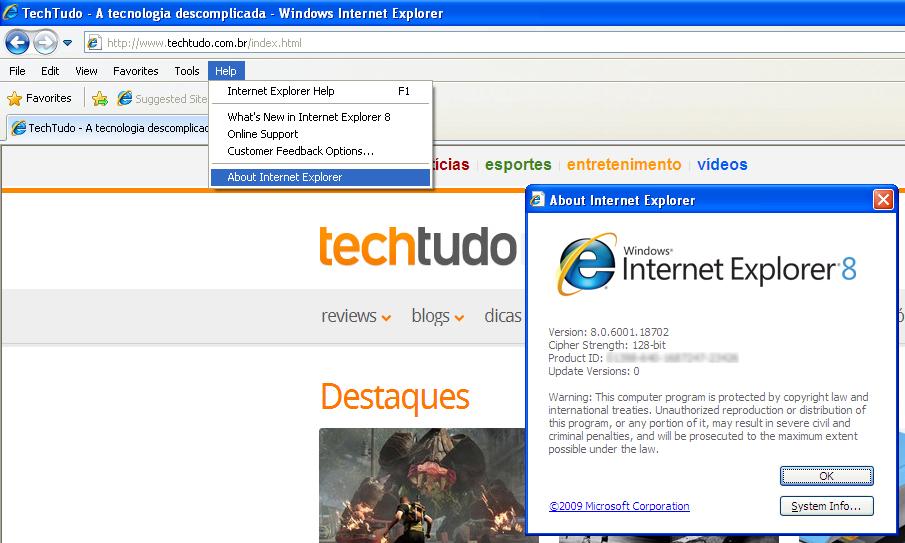 Informações do Internet Explorer (Foto: Reprodução/TechTudo)