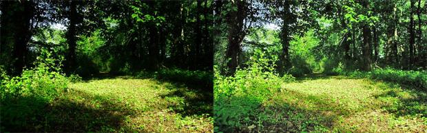 Comparação (Foto: Reprodução/Gustavo Ribeiro)