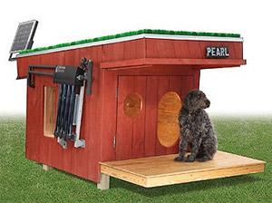 Casa para cachorros ultra high-tech (Foto: Divulgação)
