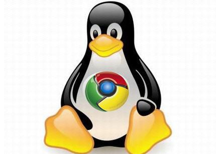 Google Chrome para sistemas Linux (Foto: Divulgação)