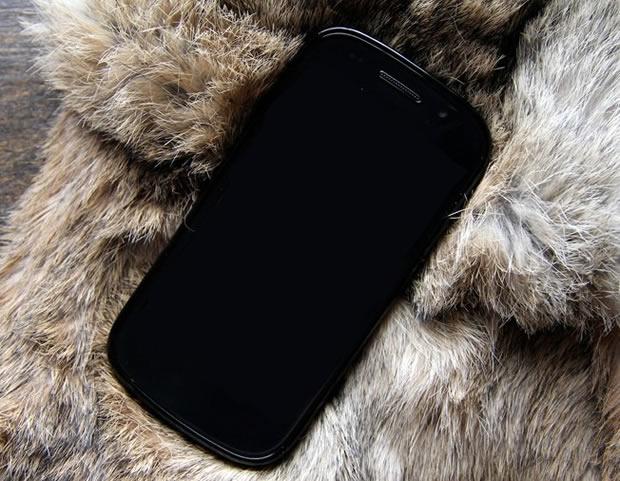 Nexus 4G (Foto: Divulgação)