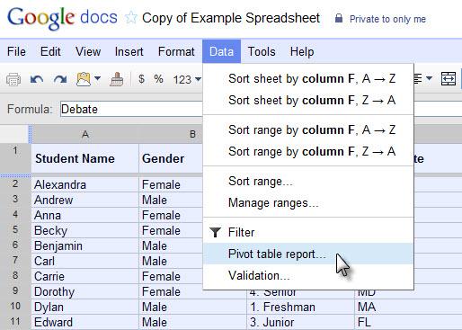 Menu que cria a Tabela Dinâmica com os dados selecionados (Foto: Reprodução)
