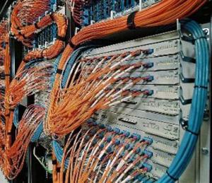 Backbone (Foto: Wikimedia)