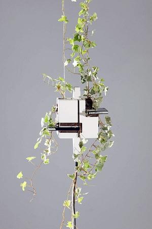 Computador conceito com samambaia (Foto: Divulgação)