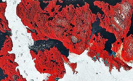 Fenômeno de Ilulissat Icefjord, Groenlândia, monitorado do espaço. (Foto: Unesco)