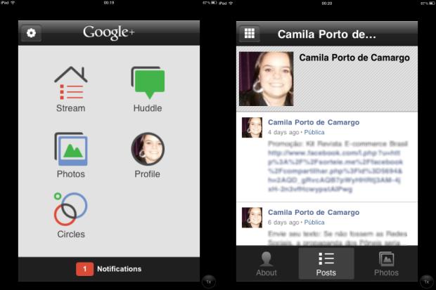 Janela inicial e perfil (Foto: Reprodução/Camila Porto)
