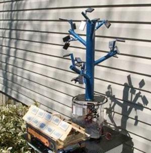 Árvore-solar (Foto: Reprodução)