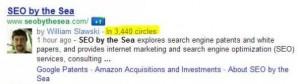 Resultado do Google+ no Google. (Foto: Reprodução)