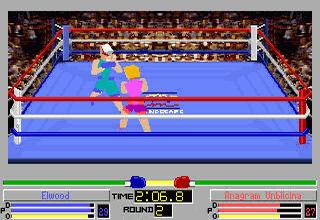 4D Sports Boxing (Foto: Divulgação)