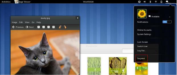 Gnome 3: interface gráfica para distribuições Linux (Foto: Divulgação)