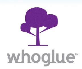 Whoglue - criação de mini redes sociais (Foto: Divulgação)