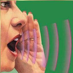 pesquisa-por-voz (Foto: baixatudo)