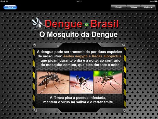 Informação e conteúdo sobre a Dengue (Foto: Reprodução/Camila Porto)