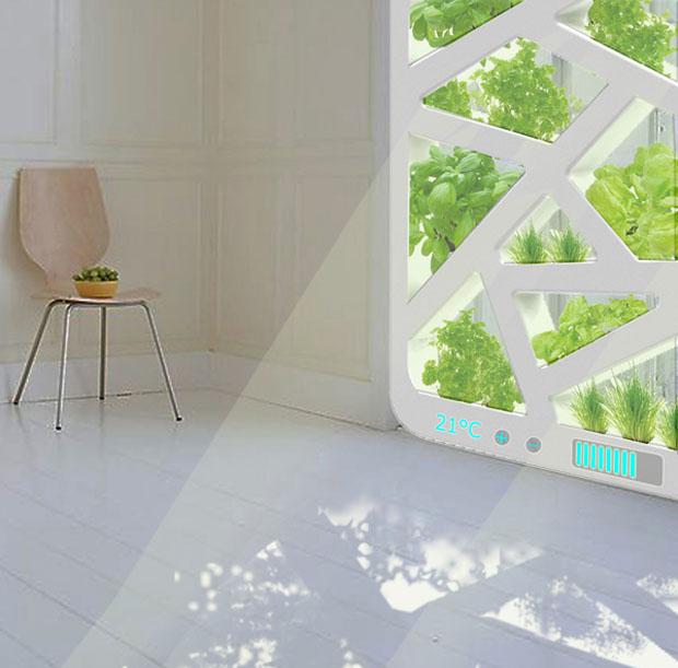 Conceito cria jardim em uma janela, com uma paisagem de plantas (Foto: Reprodução)