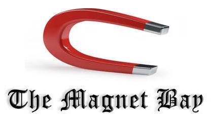 Os links Magnet são mais simples e utilizam menos banda (Foto: Reprodução)