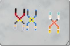 Placa de Petri da Namco (Foto: Reprodução)