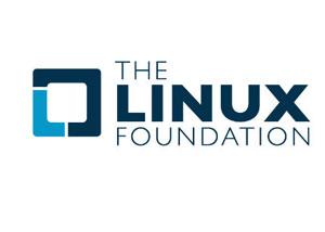 Nvidia passará a dar suporte de desenvolvimento para o Linux e pode criar drivers no futuro (Foto: Reprodução)
