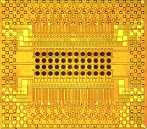 Chip optoeletrônico da IBM tem possibilidade de chegar aos computadores num futuro próximo (Foto: Divulgação/IBM)