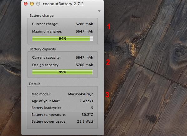 Uma janela do aplicativo com as informações sobre a bateria aparecerá (Foto: Reprodução Hugo Carvalho)