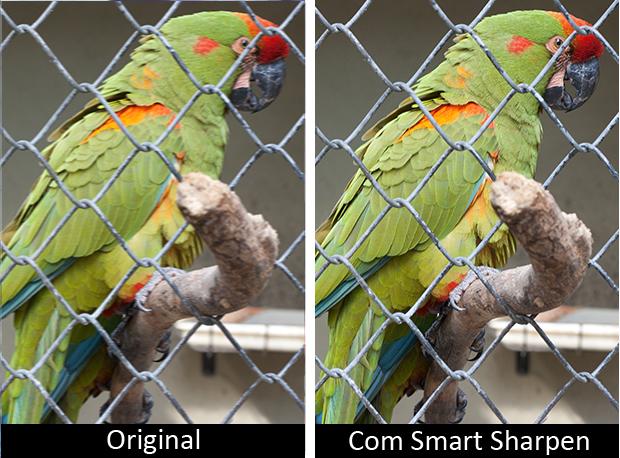 Smart Sharp (Foto: Reprodução)