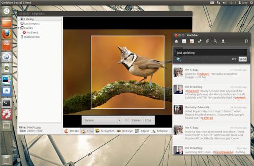 Ubuntu 12.04 LTS (Foto: reprodução)