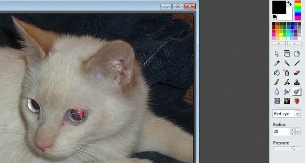 Removendo o olho vermelho com o PhotoFiltre Studio X