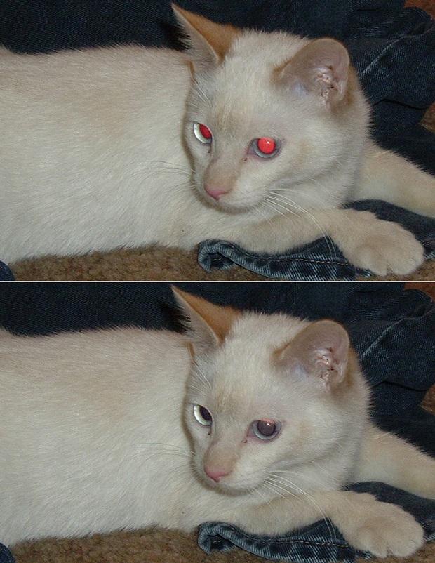 Removendo olho vermelho: antes e depois