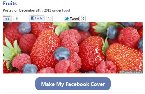 Site Facebook Profile Covers (Foto: Reprodução)
