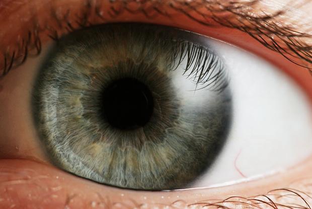 Eye_iris-macros