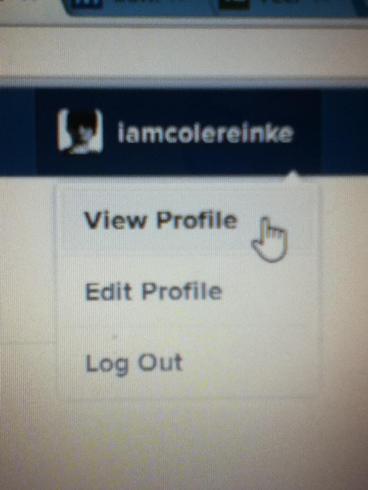 Opção Ver Perfil pode estar sendo testada pelo Instagram (Foto: Reprodução/ Cole Reinke)