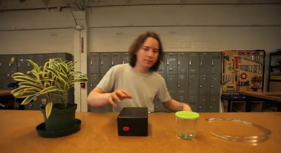 Kit promete manter plantas regadas automaticamente (Foto: Reprodução)