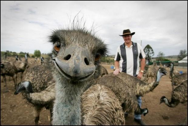 photobomb06-EMU