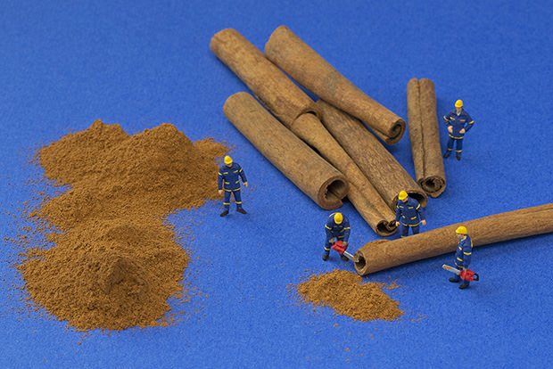 Canela foi utilizada para representar madeira (Foto: Reprodução)