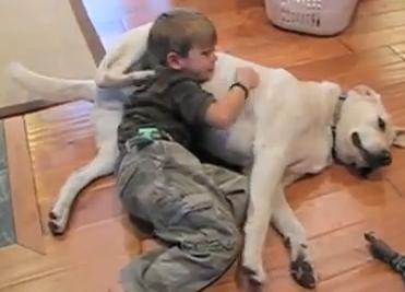 Brincadeira entre menino e cão (Foto: Reprodução)