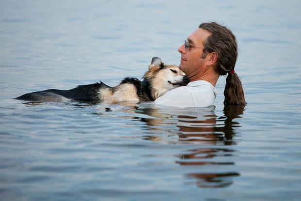 Cãozinho nos braços do dono está fazendo sucesso na web (Foto: Hannah Stonehouse Hudson)