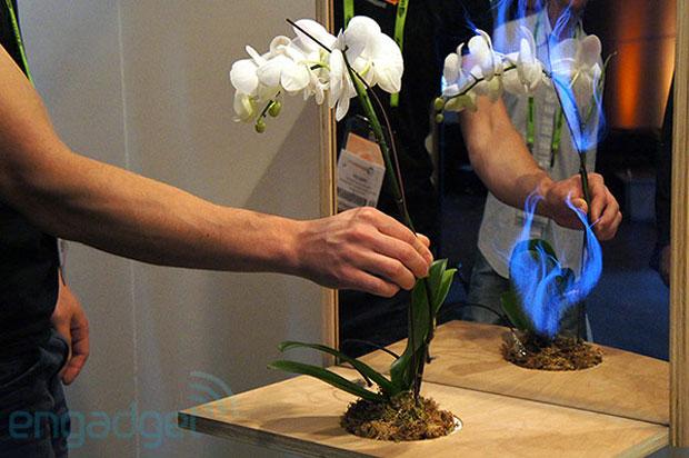 Corrente elétrica transforma a planta num tipo de dispositivo touch (Foto: Reprodução)